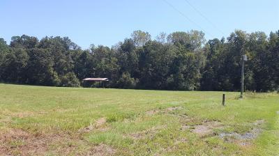 Summerville Residential Lots & Land For Sale: Buckeye Lane