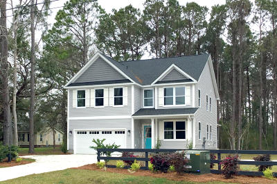 Charleston County Single Family Home For Sale: 1518 Grimball Ext Road
