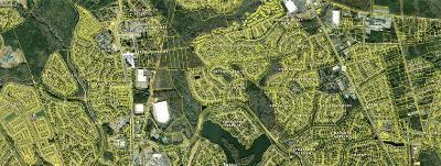 Summerville Residential Lots & Land For Sale: 110 Berkeley Farms Road