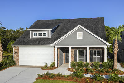 Johns Island Single Family Home For Sale: 1052 Pigeon Point