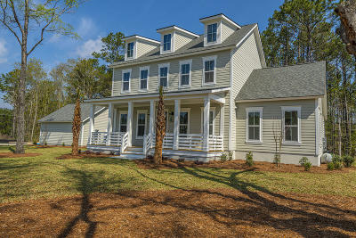Awendaw Single Family Home For Sale: 2 N Reserve Lane