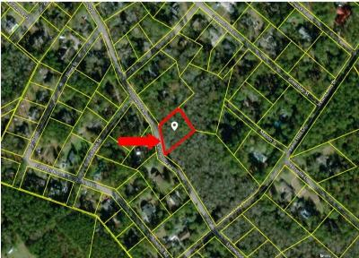 Walterboro Residential Lots & Land For Sale: Lynnwood Road