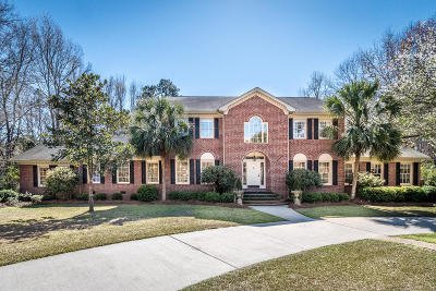 Summerville Single Family Home For Sale: 491 Barfield Drive