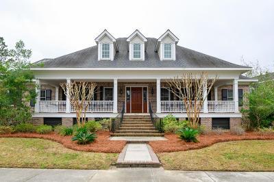 Charleston Single Family Home For Sale: 207 Ferryman Lane