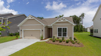 Johns Island SC Single Family Home For Sale: $390,125