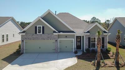 Johns Island Single Family Home For Sale: 1216 Hammrick Lane