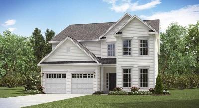 Summerville Single Family Home For Sale: 124 Beargrass Lane