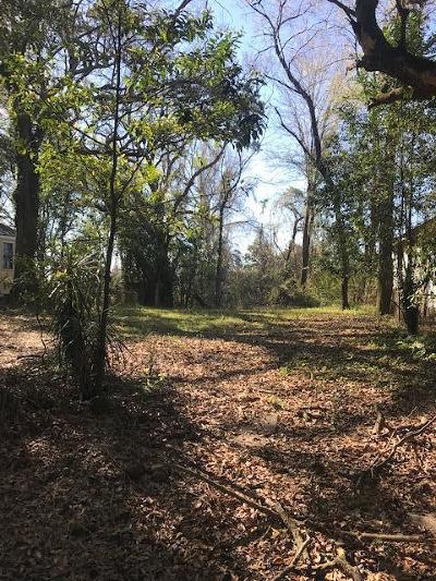 North Charleston Residential Lots & Land For Sale: 2347 Bailey Drive