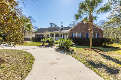Johns Island Single Family Home For Sale: 3671 Chisolm Road