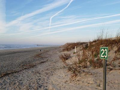 Isle Of Palms Residential Lots & Land For Sale: 2207 Palm Boulevard