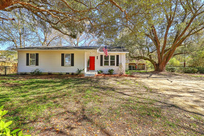 Charleston Single Family Home For Sale: 1010 Bradford Avenue