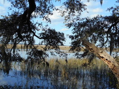 Edisto Island SC Residential Lots & Land For Sale: $138,000