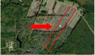 Walterboro Residential Lots & Land For Sale: Nunuville Road