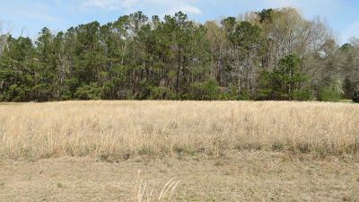 Summerville Residential Lots & Land Contingent: 292 Greyback Road