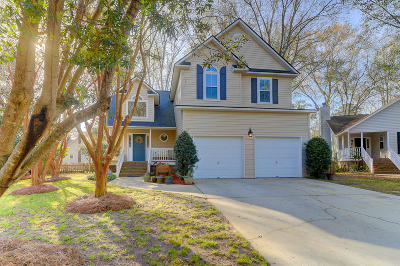 Mount Pleasant Single Family Home For Sale: 2128 Pendergrass Lane