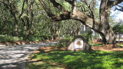 Charleston County Attached For Sale: 60 Fenwick Hall Allee Alley #621