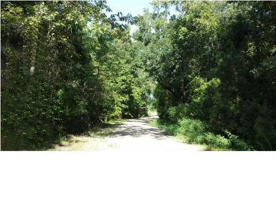Johns Island Residential Lots & Land For Sale: Lot 6 Chisolm Road