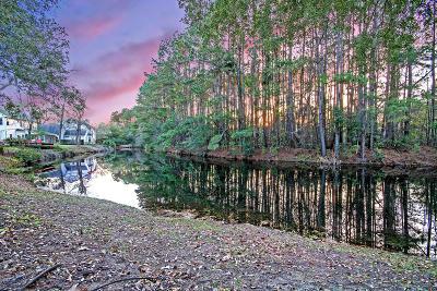 Mount Pleasant Single Family Home For Sale: 1912 Oak Tree Lane