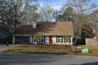 North Charleston Single Family Home For Sale: 3248 Landing Parkway