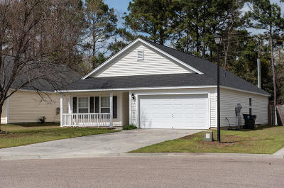 Single Family Home For Sale: 214 Emerald Isle Drive