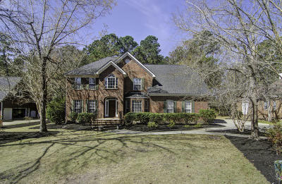 North Charleston Single Family Home For Sale: 4218 Buck Creek Court