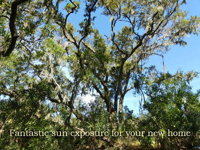 Edisto Beach SC Residential Lots & Land For Sale: $59,800