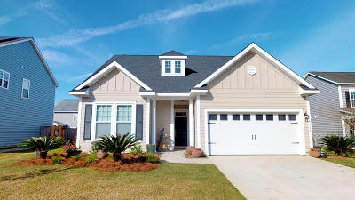 Single Family Home Contingent: 7324 Horned Grebe Court
