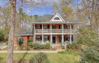 Summerville Single Family Home For Sale: 245 Scalybark Road