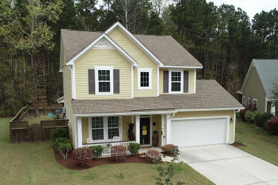 Single Family Home For Sale: 106 Saluda Drive