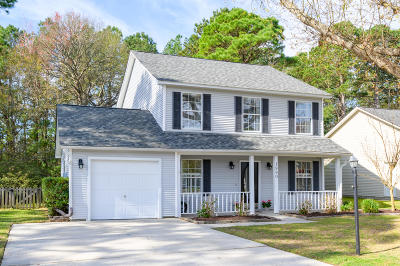 Mount Pleasant Single Family Home For Sale: 1990 Armory Drive