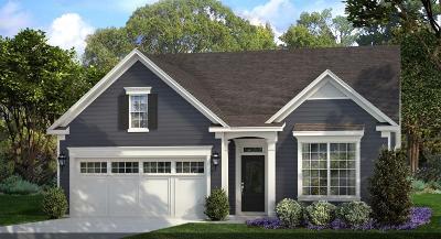 Summerville SC Single Family Home For Sale: $346,690