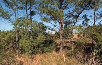 Edisto Island SC Residential Lots & Land For Sale: $899,000