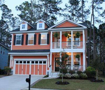 Summerville Single Family Home For Sale: 126 Evelyn Joy Drive