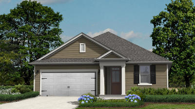 Summerville SC Single Family Home Contingent: $245,566