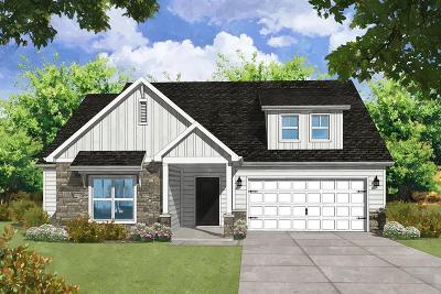 Summerville SC Single Family Home For Sale: $429,990