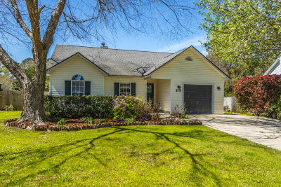 Charleston Single Family Home For Sale: 1171 Landsdowne Drive