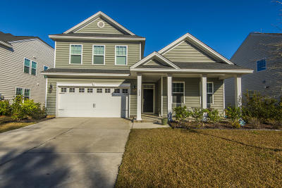 Single Family Home For Sale: 133 Blackwater Way