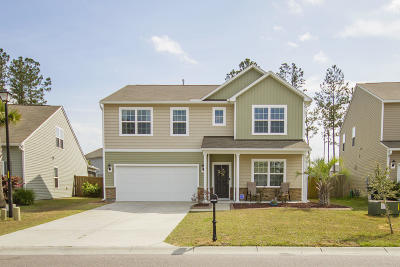 Charleston County, Berkeley County, Dorchester County Single Family Home For Sale: 235 Decatur Drive