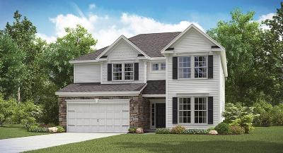 Ladson Single Family Home Contingent: 9905 Pin Cherry Court