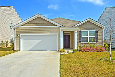 Ladson Single Family Home For Sale: 9700 Mosgrove