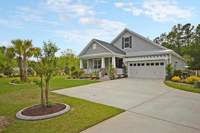 Summerville Single Family Home For Sale: 218 Haupt Street