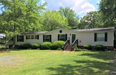Summerville Single Family Home For Sale: 210 Powell Drive