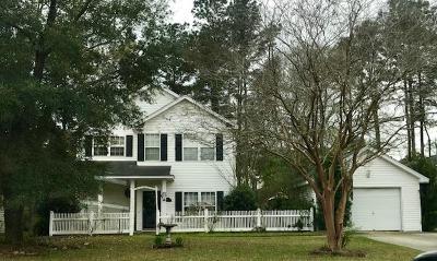 Summerville Single Family Home For Sale: 144 Jupiter Lane