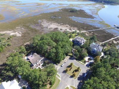 Charleston Residential Lots & Land For Sale: 604 Maygrass Court