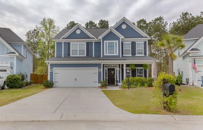 Charleston Single Family Home For Sale: 497 Nelliefield Trail