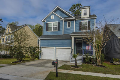 Summerville Single Family Home For Sale: 146 Ashley Bluffs Road