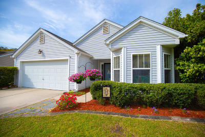 Charleston Single Family Home For Sale: 1345 Palm Cove Drive