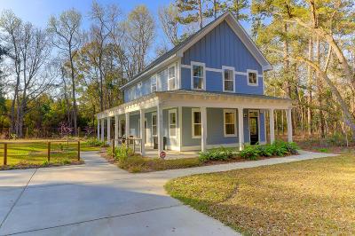 Johns Island Single Family Home For Sale: 2795 Lillian Lane