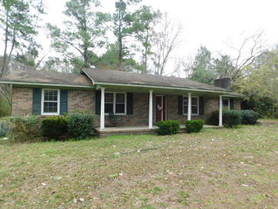 Summerville Single Family Home For Sale: 124 Scotch Range Road