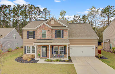 Charleston Single Family Home For Sale: 217 Gazania Way